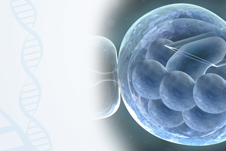 Preimplantation Genetic Testing