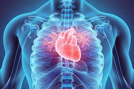 Cardiology %281%29