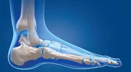 Foot ancle 2016